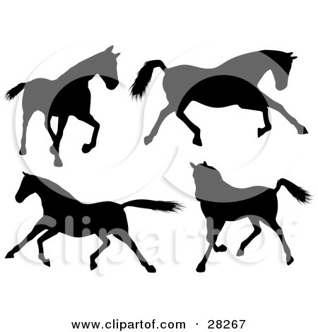 Clipart Illustration of a Set Of Four Silhouetted Horses Walking, Running And Galloping by KJ Pargeter