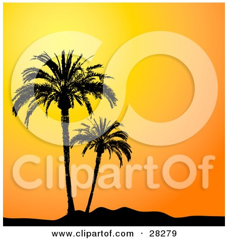 Clipart Illustration of Two Palm Trees In Paradise, Silhouetted Against An Orange Sunset Sky by KJ Pargeter