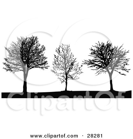 Clipart Illustration of Three Black Silhouetted Bare Leafless Trees In Winter by KJ Pargeter