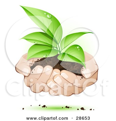 Clipart Illustration of Human Hands Supporting A Sprouting Green Plant In Dirt, Symbolizing Support by beboy