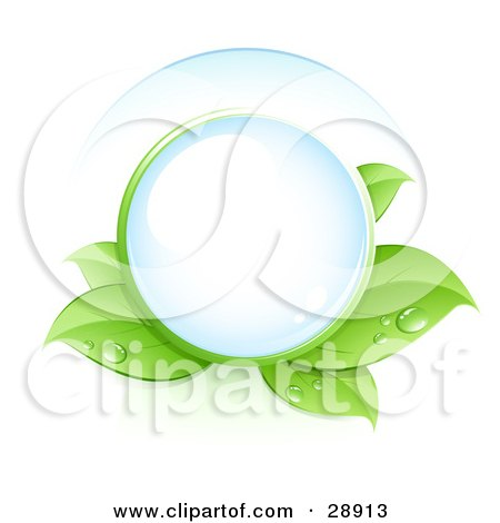 Clear Orb Nestled In Green Dew Covered Leaves Posters, Art Prints