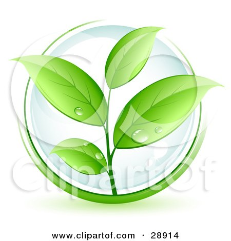 Clipart Illustration of a Lush Green Organic Plant With Dew On The Leaves, Over A Clear Orb, Circled In Green by beboy