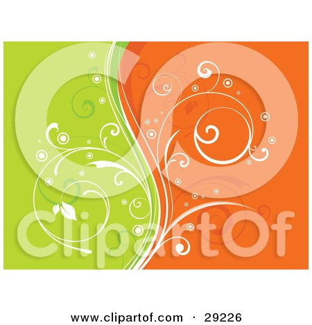 White Curly Vine Dividing A Background Of Orange And Green Posters, Art Prints