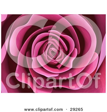 Clipart Illustration of a Background Of A Beautiful Blooming Pink Rose With Soft, Perfect Petals by Tonis Pan