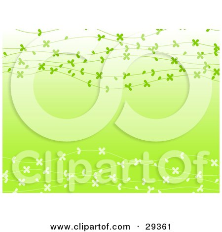 Clipart Illustration of a Gradient Light Green Background With Strands Of White And Greem Flowers Spanning Across by elaineitalia
