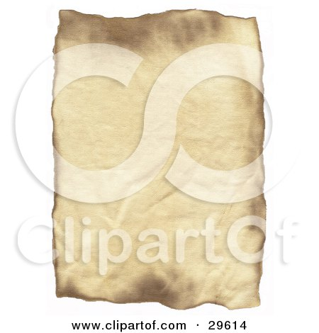 Vertical Blank Piece Of Wrinkled Parchment Paper On A White Background Posters, Art Prints