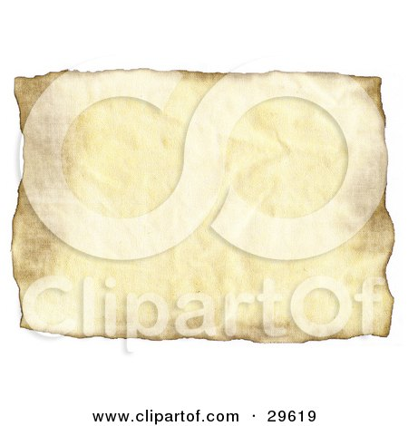 Blank Piece Of Wrinkled Parchment Paper On A White Background Posters, Art Prints