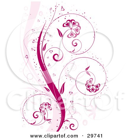 flower vine tattoos. Royalty-free clipart picture of a pink curling floral