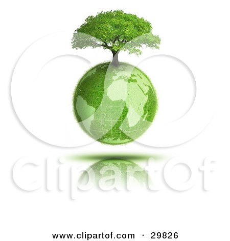 Clipart Illustration of a Tree Growing On Top Of The Grassy Earth Earth, Over A Reflective Surface by beboy