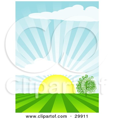 Clipart Illustration of The Morning Sun Rising Over A Tree In A Field, Casting Rays Of Sunshine In The Sky And On The Land by elaineitalia
