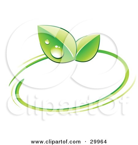 Clipart Illustration of a Pre-Made Logo Of Green Dew Covered Leaves And A Circle by beboy