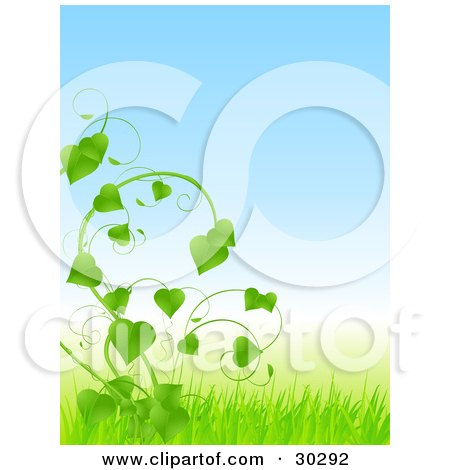 Clipart Illustration of a Lush Green Vine With Heart Shaped Leaves, Growing In A Field Of Grass by elaineitalia
