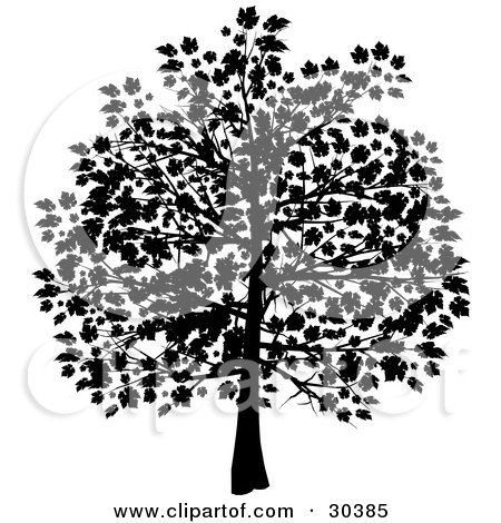 Clipart Illustration of a Silhouetted Tree In Black, With Leaves Covering The Branches by elaineitalia