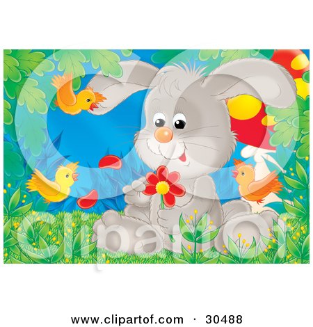 Clipart Illustration of a Gray Bunny Rabbit Sitting In Grass, Picking Petals Off Of A Red Daisy Flower, With Orange Birds Flying Around by Alex Bannykh