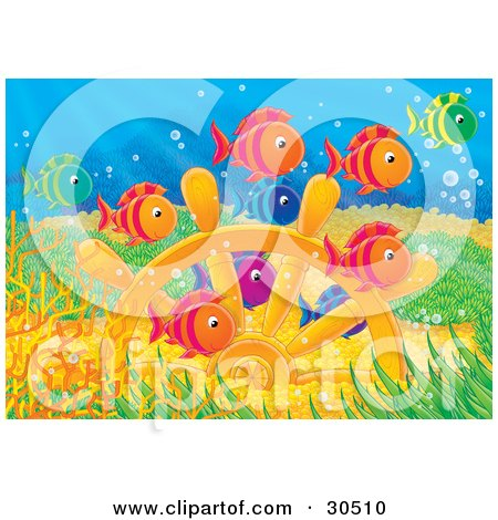 Clipart Illustration of a Colorful Group Of Green, Orange, Red, Blue And Purple Schooling Fish Swimming Over Sunken Treasure Of Gold Coins And A Ship's Helm by Alex Bannykh