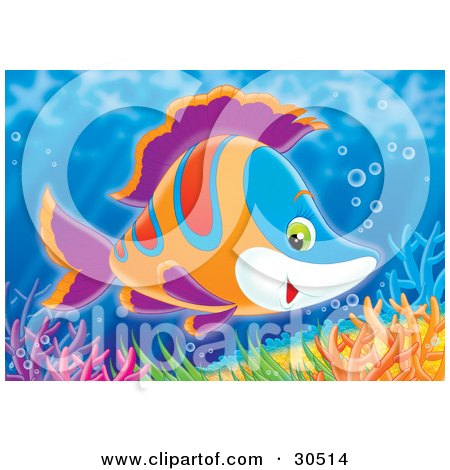 Clipart Illustration of a Friendly Blue, White, Orange, Red And Purple Marine Fish Swimming Over Colorful Corals by Alex Bannykh