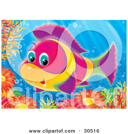 Clipart Illustration of a Cute Pink, Yellow, Green And Purple Salt Water Fish Swimming Over Sea Anemones And Corals by Alex Bannykh