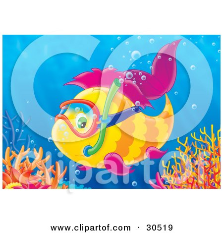 Clipart Illustration of a Yellow Fish With Purple Fins, Wearing Snorkel Gear And Exploring Near A Reef by Alex Bannykh