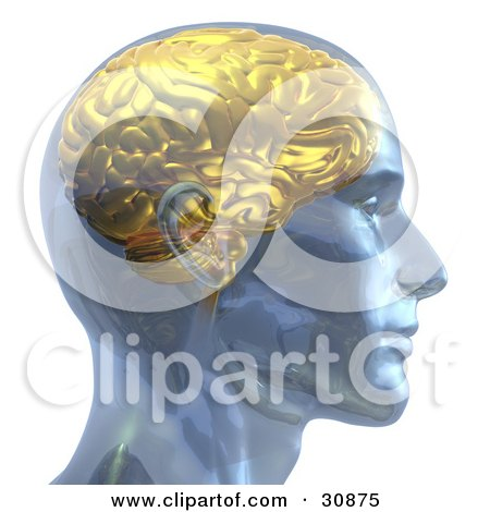 3d Rendered Man With A Golden Brain, In Profile Posters, Art Prints
