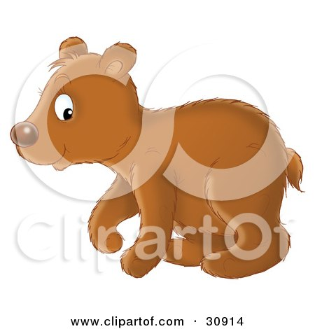 Clipart Illustration of a Cute Brown Bear Cub In Profile, Walking To The Left by Alex Bannykh