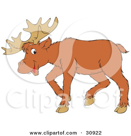 Clipart Illustration of an Adult Moose With Large Antlers by Alex Bannykh