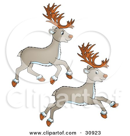 Clipart Illustration of Two Tan Caribou Leaping And Running by Alex Bannykh