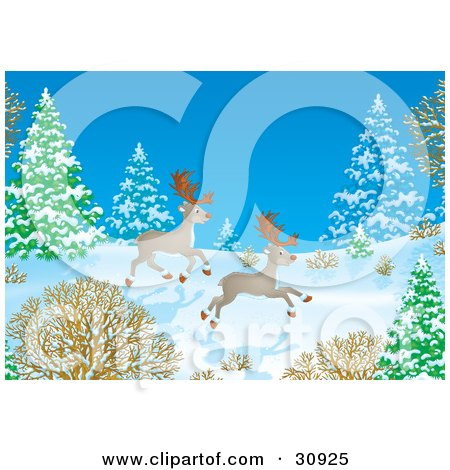 Clipart Illustration of Two Caribou Reindeer Running Through Snow In A Forest On A Winter Night by Alex Bannykh