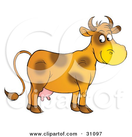 Clipart Illustration of a Friendly Orange Dairy Cow With Brown Spots, Looking Over At The Viewer by Alex Bannykh