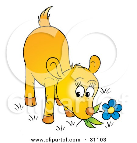 Clipart Illustration of a Yellow Deer Fawn Smelling Or Nibbling On The Stem Of A Blue Flower by Alex Bannykh