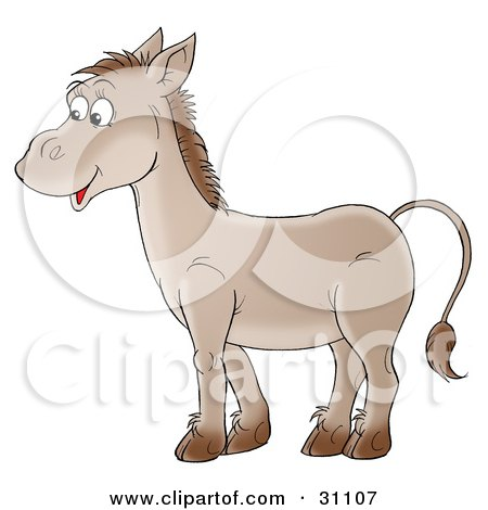 Friendly Brown Donkey In Profile, Smiling Posters, Art Prints