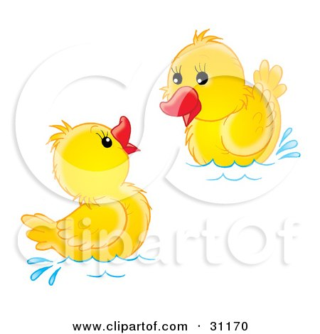 Clipart Illustration of Two Yellow Ducklings Swimming And Playing by Alex Bannykh