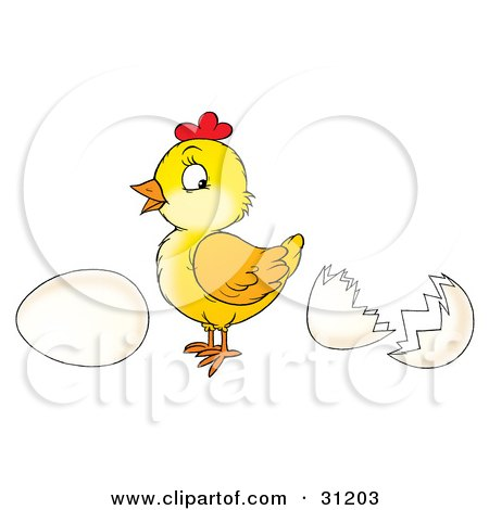 Clipart Illustration of a Cute Baby Chick Standing Between A Whole Egg And An Egg Shell by Alex Bannykh