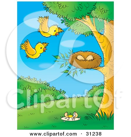 Clipart Illustration of Two Yellow Birds Flying Towards Their Eggs In A Nest, One Broken Egg On The Ground by Alex Bannykh
