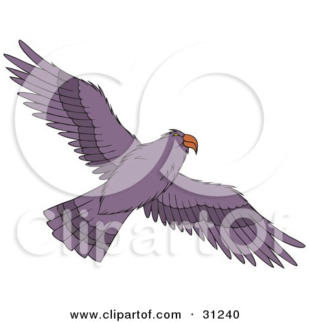 Clipart Illustration of a Flying Purple Hawk As Seen From Below, Its Wings Spanned by Alex Bannykh