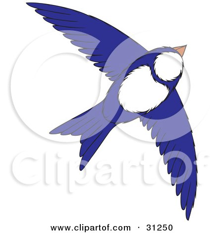 Flying White And Blue Bird With Its Wings Spanned Posters, Art Prints