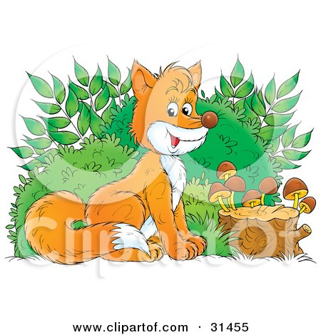 Clipart Illustration Of An Adorable Bushy Tailed Fox Sitting In Front Of Bushes By A Stump With Mushrooms