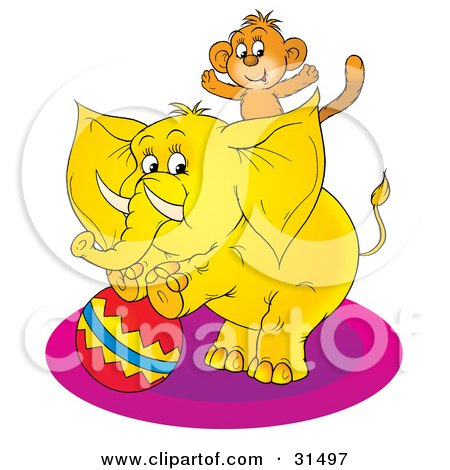Cute Monkey On The Back Of A Circus Elephant Standing Up On A Ball, On A White Background Posters, Art Prints
