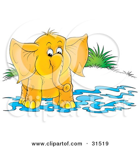 Clipart Illustration of a Cute Elephant Standing In Shallow Water On Shore, On A White Background by Alex Bannykh