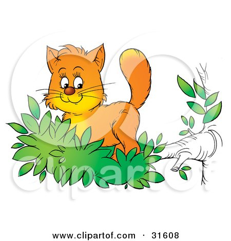 Clipart Illustration of a Cute Ginger Kitten Exploring The Outdoors, Standing In Leaves At The End Of A Tree Branch by Alex Bannykh