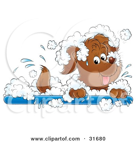 Playful Puppy Dog Splashing Around In A Bubble Bath Posters, Art Prints