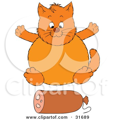 Clipart Illustration of a Fat Orange Cat Sitting In Front Of A Roll Of Sausage by Alex Bannykh