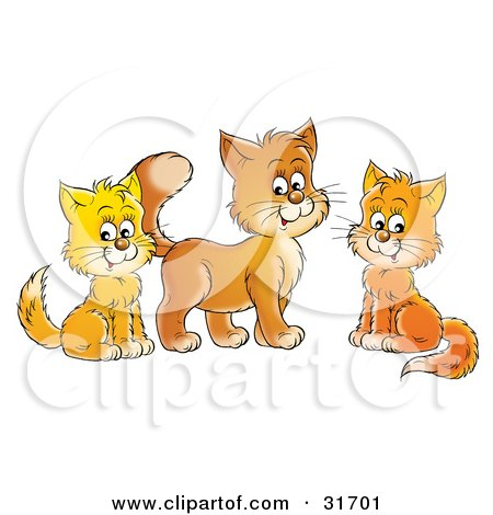 Clipart Illustration of Three Orange And Yellow Cats Sitting And Looking At The Viewer by Alex Bannykh