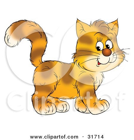 Clipart Illustration of a Happy Kitten With Stripes On Orange Fur, Walking To The Right by Alex Bannykh