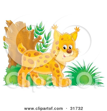 Clipart Illustration of an Energetic Bobtail Kitten Exploring In The Woods by Alex Bannykh