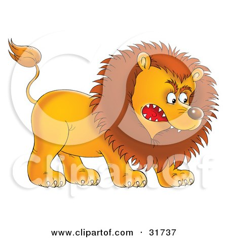 Clipart Illustration of an Aggressive Young Male Lion Growling And Baring His Teeth by Alex Bannykh