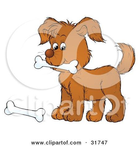 Royalty-Free (RF) Dog Bone Clipart, Illustrations, Vector Graphics #1