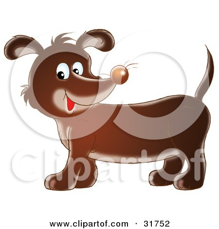Cute Dachshund Dog With Whiskers On His Nose, Smiling At The Viewer Posters, Art Prints