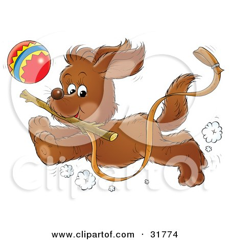Clipart Illustration of an Energetic Puppy Running With A Stick In Its Mouth, A Ball In The Background A Leash Trailing In The Air by Alex Bannykh