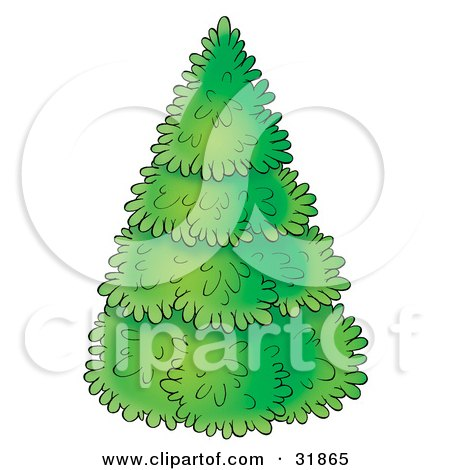 Clipart Illustration of a Perfectly Trimmed Evergreen Christmas Tree, On A White Background by Alex Bannykh