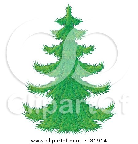 Clipart Illustration of a Perfect Green Christmas Tree With Branches Waiting To Be Decorated, On A White Background by Alex Bannykh